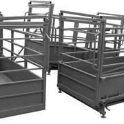Весы для взвешивания скота Лидер-3 фото