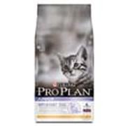 Корм Pro Plan Junior для котят с курицей и рисом 10 кг фото