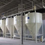 Завод кобмикормовой до 3 тонн в час фото