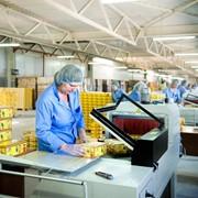 Сортировка продукции по внешнему виду упаковки,Услуги цеха переупаковки фото