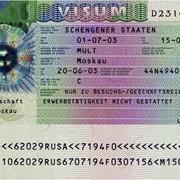 Шенген виза за один день фото