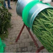 Сетка для упаковки новогодних елок фото