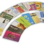 Изготовление визиток и буклетов фото