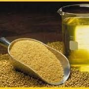 Соевый шрот, сыродавленное масло. фото