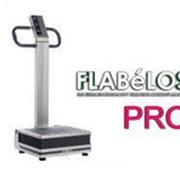 Виброплатформа OTO Flabelos FL-3000 PRO Устаревшая модель нет в наличии фото