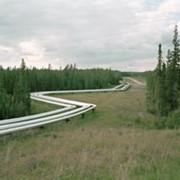 Изоляция, переизоляция нефтегазопроводов, резервуаров фото