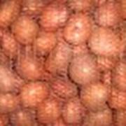 Склеивание упаковочных материалов Овощная сетка оптом в Волгограде различных видов и размеров. фото