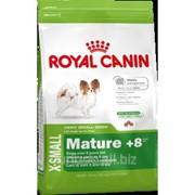 Сухой корм для собак Royal Canin X-SMALL MATURE +8 - 1,5 кг фото