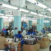 Изготовление рулочки по прямой Код товара 4527 фото