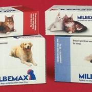 Ветеринарные товары, Мильбемакс таблетки фото