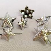 Звезда МВС (полиамидная, металлическая) фото