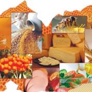 Консультации по модернизации пищевого производства фото