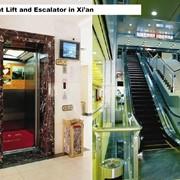Лифты и эскалаторы, фирма Бриллиант (Китай, Шэньян) фото