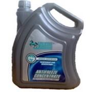 Охлаждающая жидкость VAXOIL Antifrizze Concantrate фото