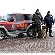 Профессиональная охрана объектов. фото