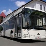 Автобус МАЗ 203085 фото