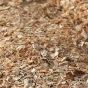 Опилки древесные, стружка, загрязненные маслами, Утилизация и обработка древесносодержащих отходов фото