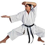 Кимоно для карате Tenno ката HAYASHI фото