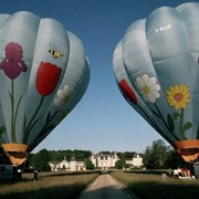 Воздушные шары (тепловые аэростаты) продажа фото
