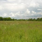 Продажа земельных участков без подряда фото