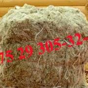 Пакля строительная льняная тюк 60кг. фото