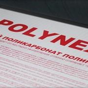 Поликарбонат POLYNEX 10 мм фото