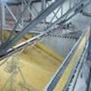 Сушка, очистка, хранение и отгрузка зерновых и масличных культур. фото