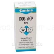 Нейтрализует специфические запахи течной суки Canina DOG-STOP Forte Tabletten 60 таб фото