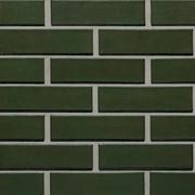 Кирпич Шишка зеленый фото