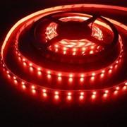 Светодиодная лента SMD3528-600R-12,IP65(красный) фото