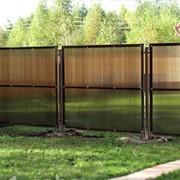 Заборы из поликарбоната фото