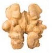 Грецкие орехи оптом и в розницу фото