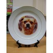 Тарелки с фото фото