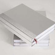 Ежедневник датированный Компаньон, размер блока 14,5х20,6см, алюминий, серебреный обрез фото