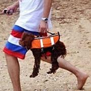 Спасательные жилет для собаки Spass-dog, размер S, собаки до 5 кг, 43х26х32 см фото