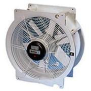 Разгонный (циркуляционный) вентилятор Multifan фото