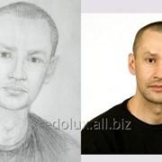 Нарисую Ваш портрет фото