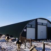 Бескаркасные арочные фермы фото