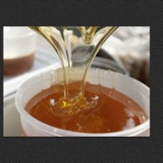 Мёд из лесного разнотравья Купить Черкасская область фото
