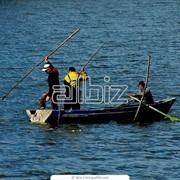 Комбинированные лодки фото
