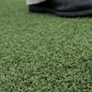 Покрытие для мини-гольфа Xtreme Turf Pro N12 фото