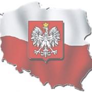 Изучение польского языка фото
