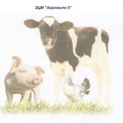 Заменитель сухого молока ЗЦМ Агромилк 5 фото
