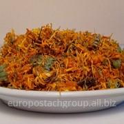 Квіти календули сушені фото