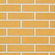 Угловая облицовочная плитка Lode DZINTRA темно-желтая гладкая 120x250x65x10 фото