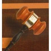 Представительство интересов в административном суде (за судебное заседание) фото