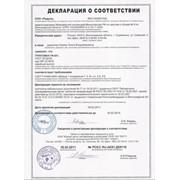 Декларация соответствия продукции техническим регламентам фото