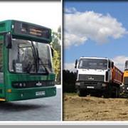 Автомобили грузовые МАЗ фото