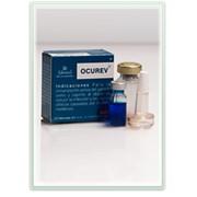 Вакцина против бруцеллеза OCUREV фото