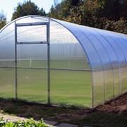 Теплица Урожай Сотка 8м из труба 25х25,, фото